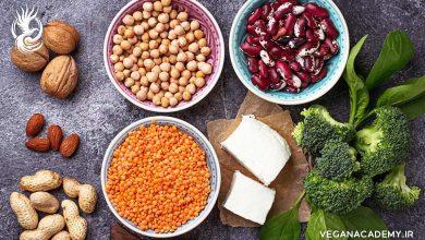 Photo of پروتئین در گیاهخواری و منابع آن