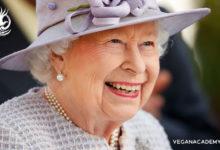Photo of ملکه انگلستان از مصرف خز خودداری میکند