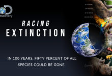 Photo of دانلود مستند مسابقه انقراض (Racing Extinction)